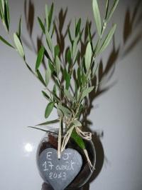 l 39 arbre symbolique un cadeau original pour une naissance un mariage ou d 39 autres v nements. Black Bedroom Furniture Sets. Home Design Ideas